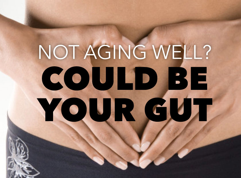 Aging and the gut: Healing with Collagen Hyaluronic Acid