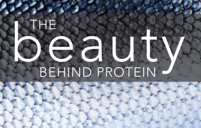 beauty-fish-protein