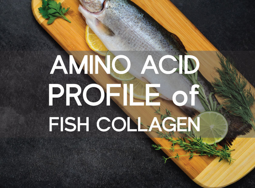 amino acid fish collagen beauty protein
