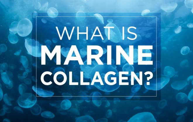 what is marine collagen